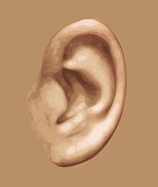 ear-159305_640